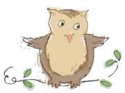 418_owl