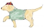 441-FP-GREEN-SWEATER-DOG