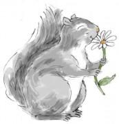 445_squirrel