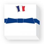 CHUBFLAG-FRANCE