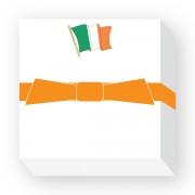 CHUBFLAG-IRELAND